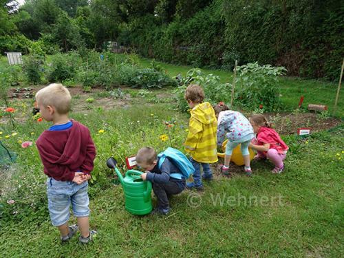 Fleißige Gärtner